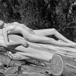 Nude with Logs